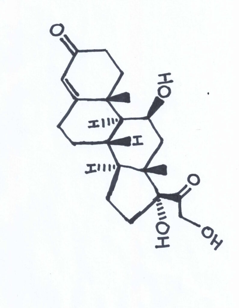 Chemical Structure of Cortisol